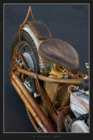Ratbike Delight III by HogRider