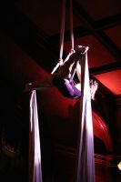 trapeze 5 by creativenamechick