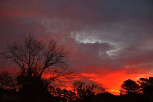 Morning sky2-4-13 by Tailgun2009