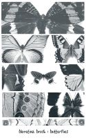 bluretina brush:butterflies by bluretina-stock