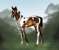 Foal Design For Schn3e by Cat-Orb