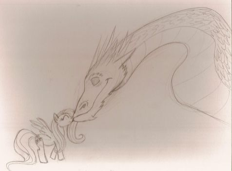 Smaug-and-Fluttershy by Night-Fury777