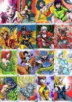 DC THE WOMEN OF LEGEND SKETCH CARDS 1-16 by stalk