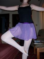 Purple Chiffon Ballet Skirt by taylor-of-the-phunk
