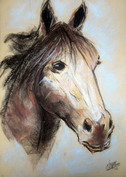 Horse painting by Gore7n