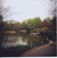 Central Park Bridge Holga by newjuventud