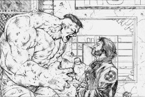 Hulk vs Wolvie by scottygod