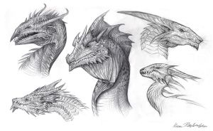 Dragon Busts by KatePfeilschiefter