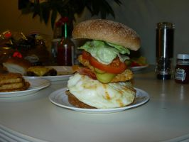 The Zito Burger Part 2 by Zito-is-Neato