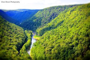 Grand Canyon of Pennsylvania by GlassHouse-1