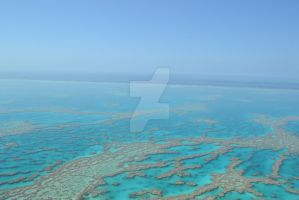 Great Barrier Reef by Jaded-but-Beautiful