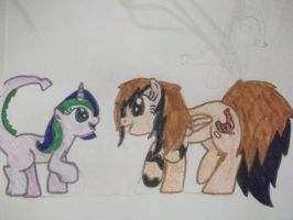 mlp my OC and fionna by tiffanykip
