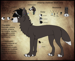 Shaerray Character Sheet 2013 by Shaerray