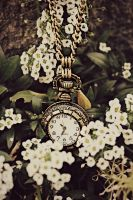 Pocket Watch and Flowers by angela-swift
