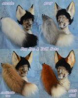 Foxes by Beetlecat