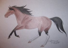 Real Horses--Sargent by Raiha