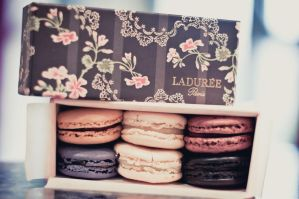 Laduree Macaroons by MMortAH