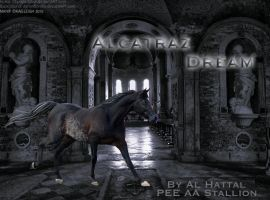 Alcatraz Dream Contest Entry by Kaieleigh