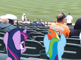 Confound these ponies invading the stadium. by Legate47
