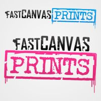 Fast Canvas Prints by Fraawgz