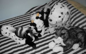 It's a Black And White Plush Party! by StevenRoy