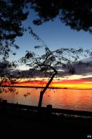 Fall Sunset Series #111 by LifeThroughALens84