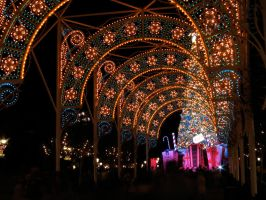 Epcot Christmas 13 by AreteStock