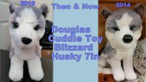 Douglas Blizzard Husky Then And Now by Vesperwolfy87