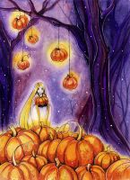 Pumpkins by MaryIL