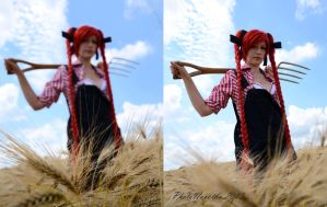 In cereal field by PhotoNovotna