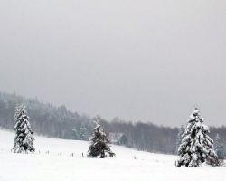 Winterland 4 STOCK by philippeL