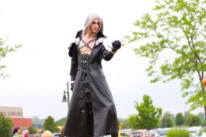 ColossalCon 2013 - Might of Sephiroth 2 by VideoGameStupid