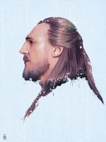star wars - Qui-Gon Jinn by tashamille