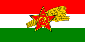 Provisional Government Flag by Party9999999