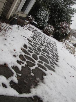 Snow Pathway by BloodWolfGirl99