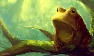 Frog by Friis