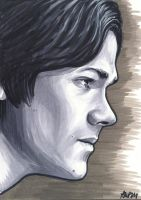 Sam Winchester by AshleighPopplewell