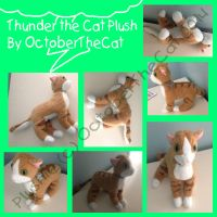 Thunder The Cat Plushie by P0indexter