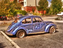 Abandoned VW Beatle 1303 HDR by evrengunturkun