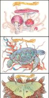 Trio of Sci Illos by golden-quince