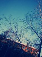 nature of our city. by littleEvi