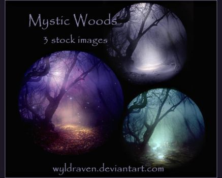 Mystic Woods Stock by wyldraven
