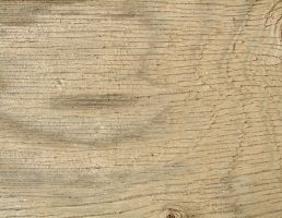 daily texture stock Wood 29 by kanderson137