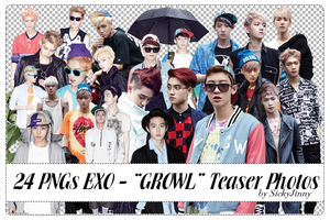 Pack 24 PNGs EXO by SickyJinny