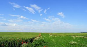 summer_panorama by victor23081981