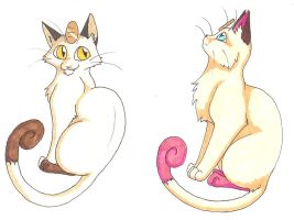 Meowth Duo by CaptainMorwen