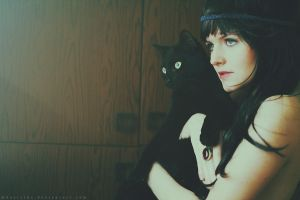Black cats by Basistka