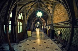 Manchester Town Hall 2 by Engazung