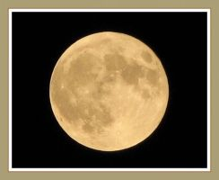 Yellow Moon by picworth1000wrds
