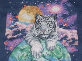 Tiger in Space by carand88